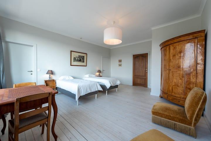 Chambre (terrasse) à louer dans maison bourgeoise