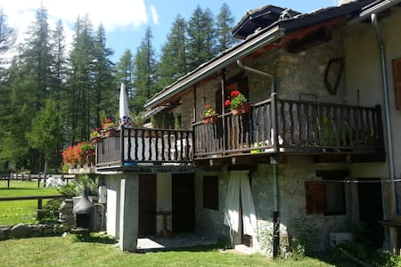 Beautiful chalet in the middle of the Val Ferret