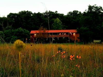 Mad Moose Ranch, room 2 - Eureka Springs, - 一軒家