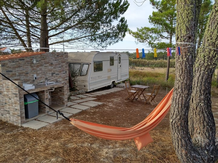 Cosy Caravan Glamping surrounded by Nature