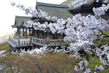 Centre of Kyoto! 8mins to Gion and Kiyomizu temple - Higashiyama Ward, Kyoto