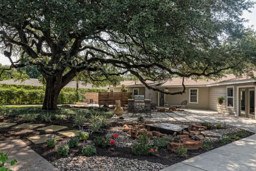 Backyard has 2 gas grills, wood burning chimenea and fountain with over head hanging lights that come on in the large oak tree at dusk