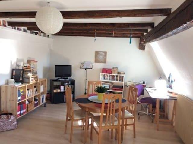 2 pièces dans maison alsacienne :) - Strasbourg - Apartment