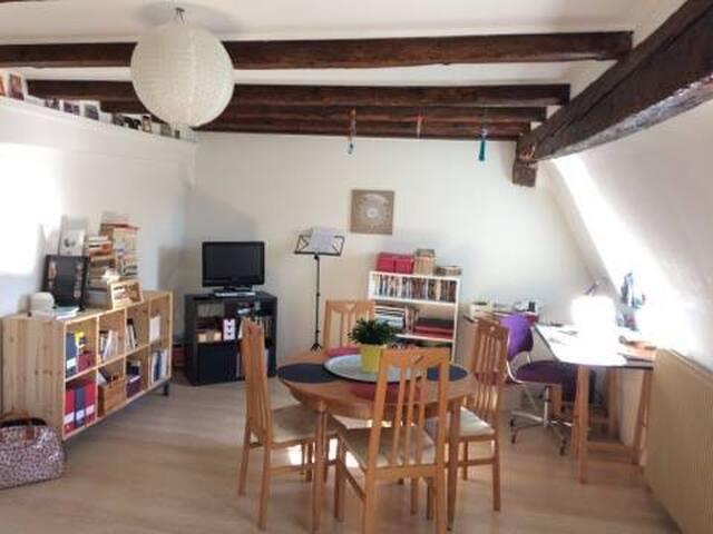 2 pièces dans maison alsacienne :) - Strasbourg - Lägenhet