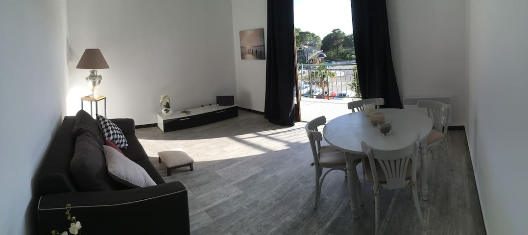 Grand appartement à 50 mètre de la plage, Sagone - Vico