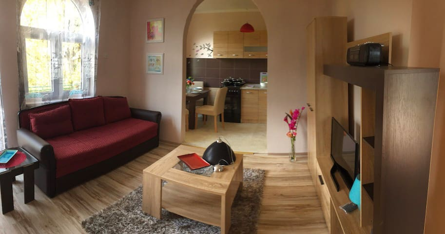 Comfortable apartment on Jevremovac near Šabac