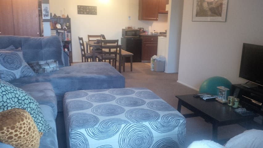 Comfortable Apartment near MSU - Lansing - Huoneisto