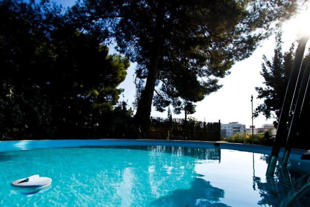Piscina entre arboles al fondo Tarragona