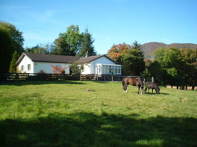 Corrie Glen B&B Aberfoyle The Trossachs