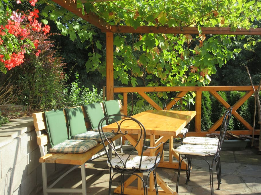 BBQ seating shaded from grape vine.