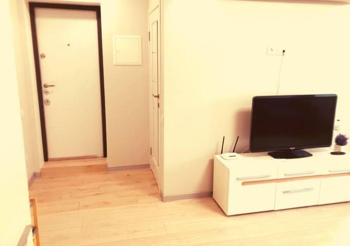 входная дверь,TV