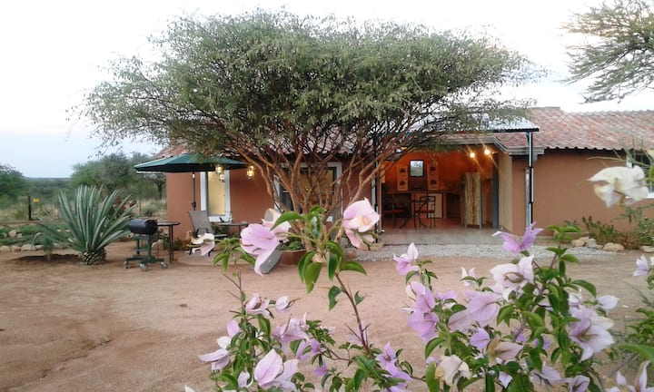 STUDIO CACAO IN BUSH OTJIWARONGO