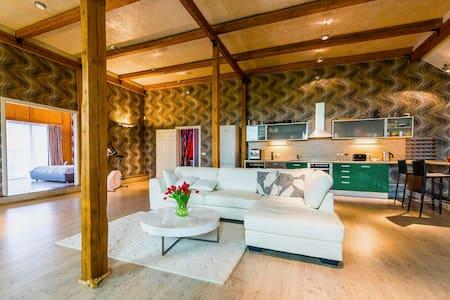 Ultimate summer vacation property near Pärnu - Audru - Loft