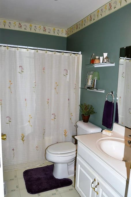 Full Bath with tub & shower