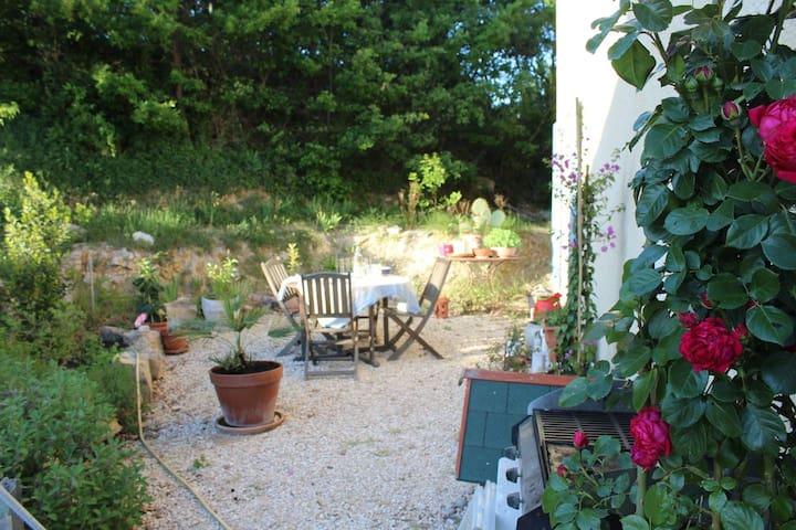 Rez de jardin -  grande  pièce à vivre et terrasse