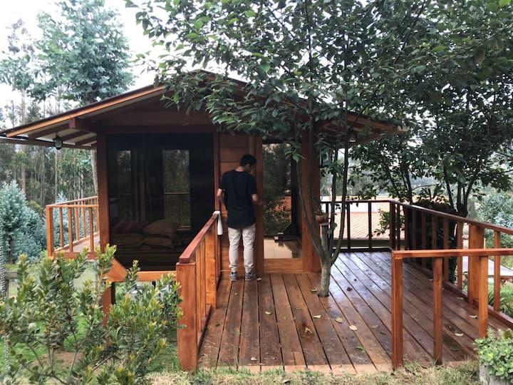 Exclusiva casa del árbol ideal para parejas.