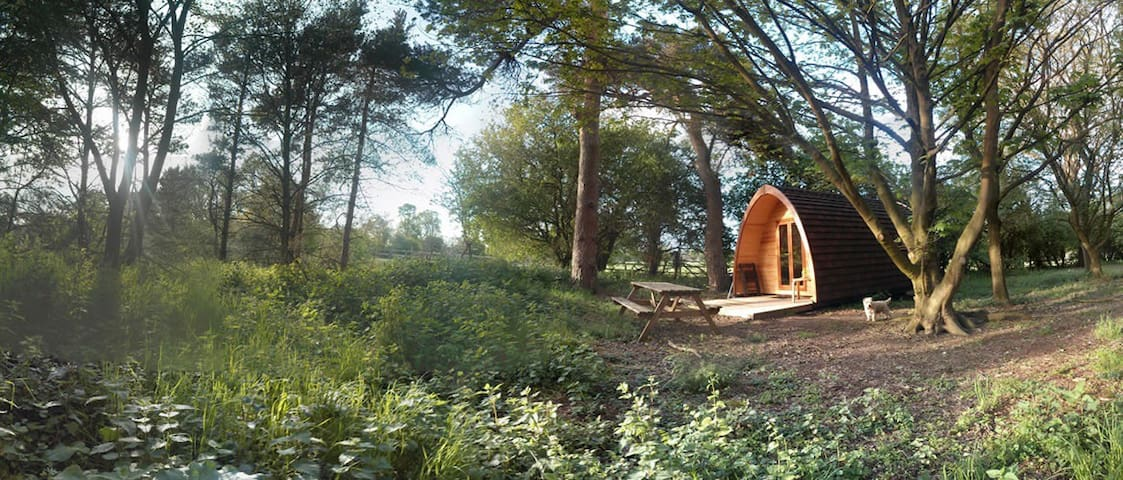 The Secret Garden Woodland Glamping