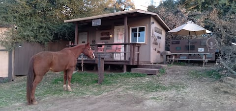 Glamping Cabin with or without your Horses