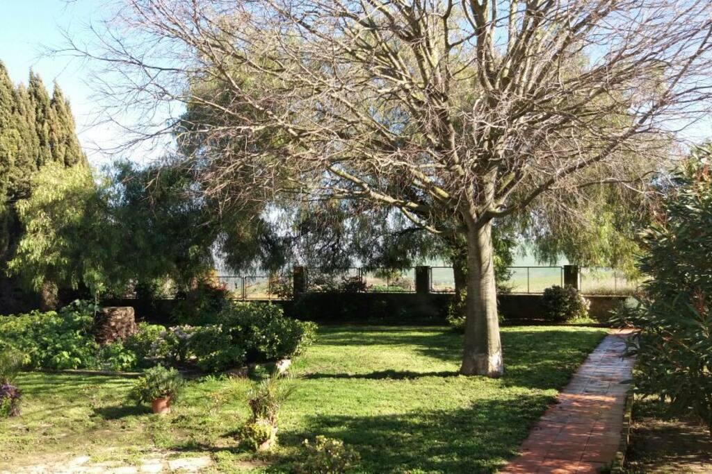 Privater Garten Ferienhaus