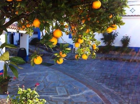 Holiday house in Alentejo