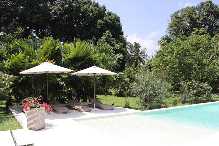 Casa con gran piscina en clima cálido. CD165