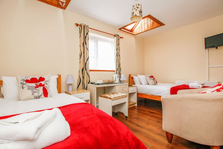 Twin room with en-suite bathroom and parking - Oxford - Bed & Breakfast