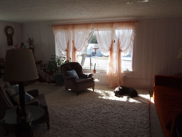 The living room is a pink filled joy to be in throughout the day. Does NOT come with dog lying in the sun.