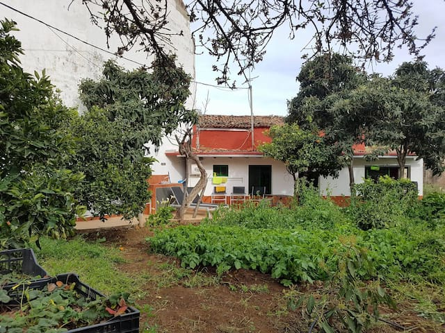 Beautiful accommodation between trees and nature - Valle de San Roque - Huis