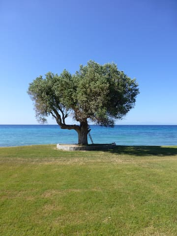 Sweet nest in front of the Aegean sea - Moles Kalives - Apartamento