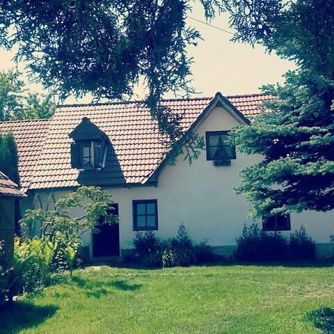 Transylvanian Cottage near Sibiu (free bikes) - Porumbacu de Sus - Loft