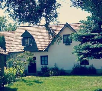 Transylvanian Cottage near Sibiu - Porumbacu de Sus