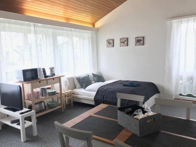 Zimmer mit Privateingang und Parkplatz nahe Zürich