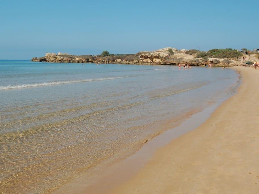 Spiaggia libera a 50 mt