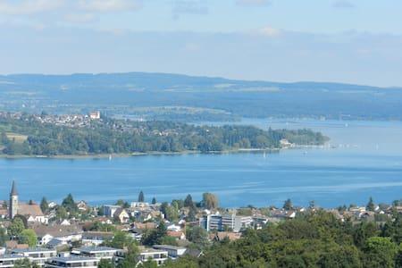Komfortable Ferienwohnung am Bodensee - Untersee - Steckborn - Apartament