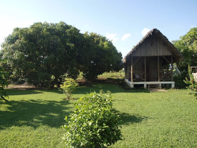 Nosy Be bungalow en bord de mer - Diana - Bungalo