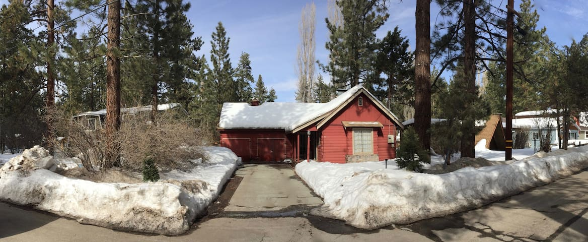 Awesome getaway pet friendly cabins for rent in big for Big bear cabins pet friendly