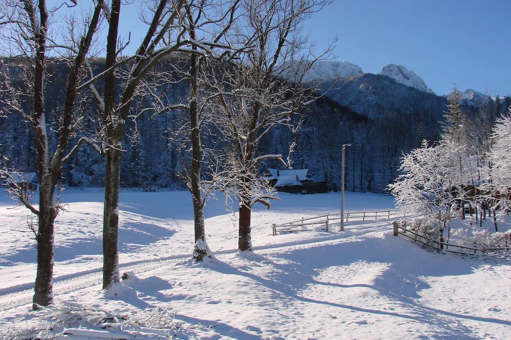 widok zimowy