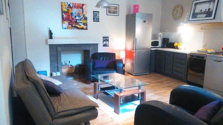 Grand Appartement Atypique Hyper-centre Pau