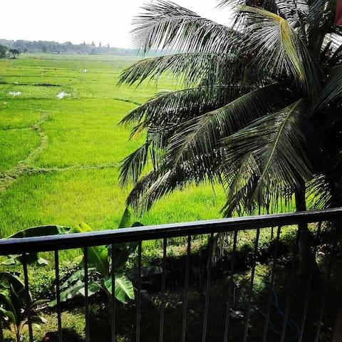 Serene View Tourist Rest