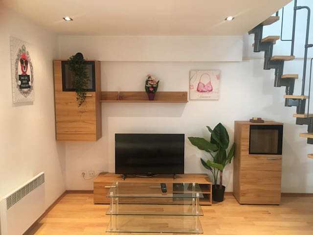 Very beautiful flat in the city centre