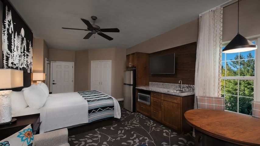 Marriott Willow Ridge Luxury Studio sleeps 4