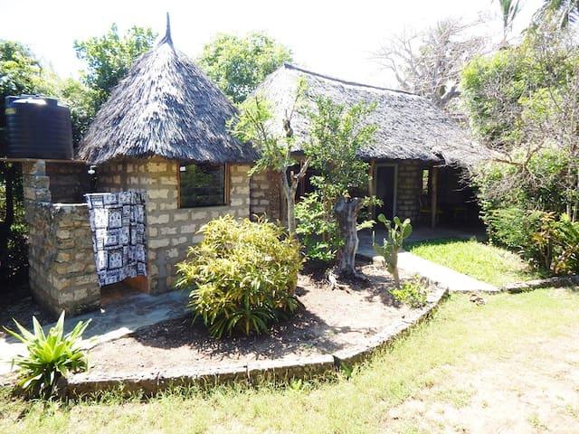 Tiny Mangroovehouse
