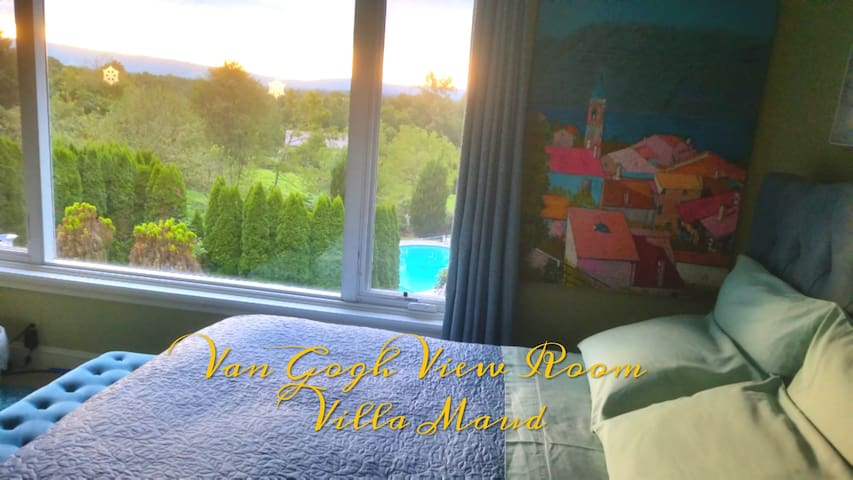 Van Gogh's View in Private Villa
