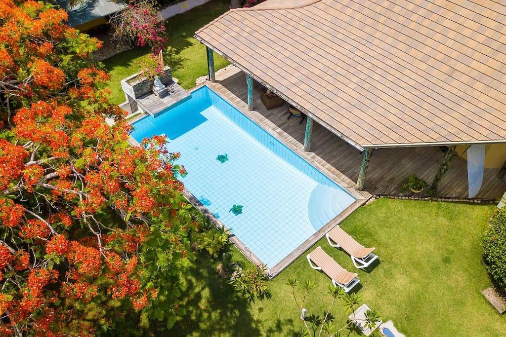 Enjoy the large refreshing tortuga swimming pool.