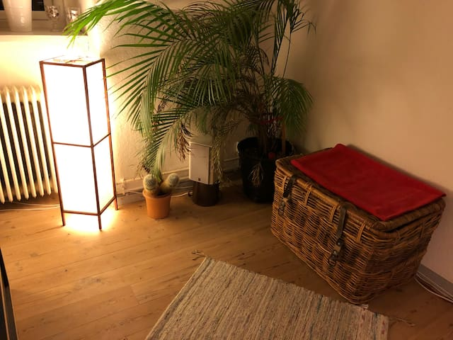 Room in a hygge apartment close to university