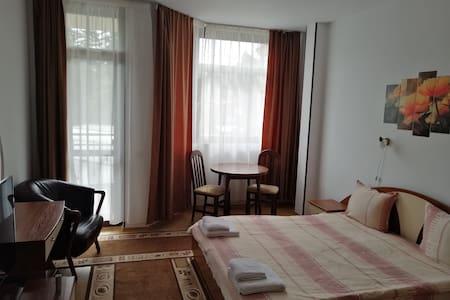 Studio in Flora Apart hotel 322