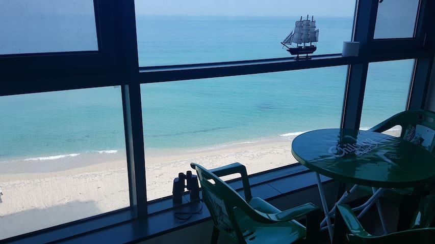 국내에서 바다와 가장 가까운 아파트 .집 앞이  바로 해변. 파도소리가 가득 들림