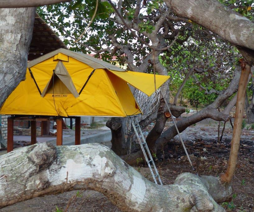 Dachzelt mit Regen und Moskito schutz