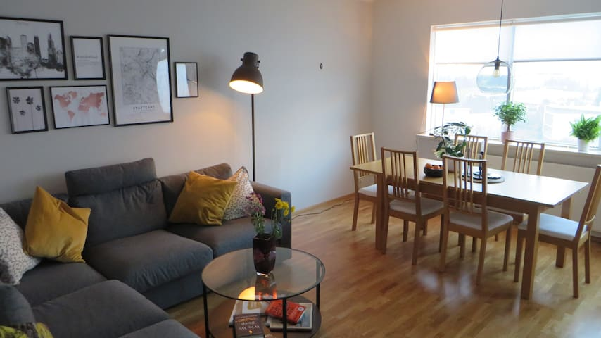 Two bedroom apartment close to downtown Reykjavík