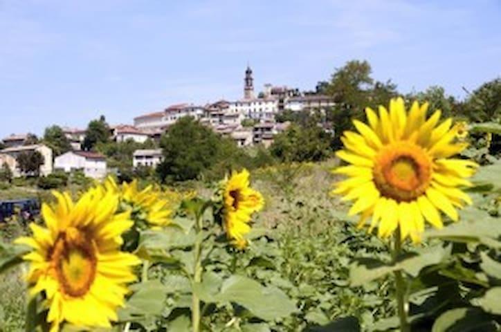 Casa Vacanza nelle Langhe e Monferrato - Frassinello Monferrato - Byt